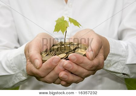 Seedling in coins
