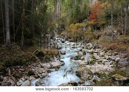 Landskape / Mountain Stream through The Forest / Hintersee (Ramsau), Germany