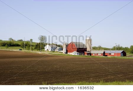 Farm House And Buildings