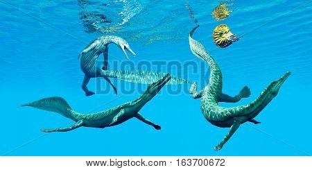 Mesosaurus Marine Reptiles 3D illustration - Mesosaurus reptiles go after an Ammonite which was a frequent prey in the oceans of the Permian Period.