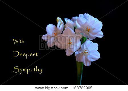 Sympathy card with white floweres on dark background