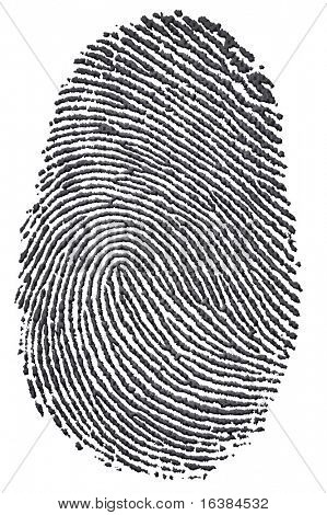 Carbon fingerprint made from a photo of genuine carbon fibre, isolated on a white background. Environmental concept of leaving a carbon footprint.