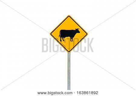 Cow crossing road sign isolated on white