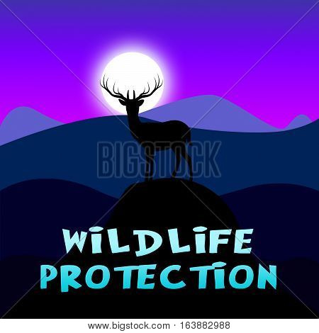 Wildlife Protection Shows Animal Conservation 3D Illustration