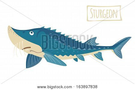 Blue sturgeon, vector  illustration  funny cartoon style