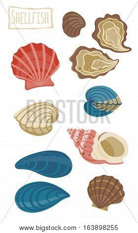 Set of assorted Shellfish, vector cartoon illustration