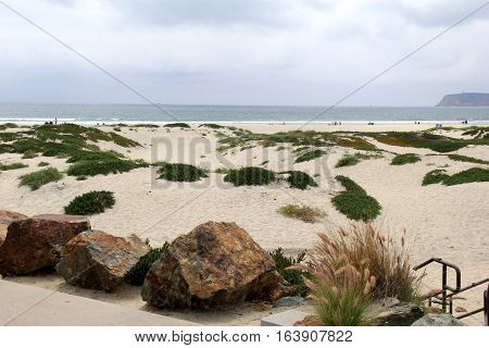 Horizontal image of seascape, with sea grass and sand leading one to the beach beyond