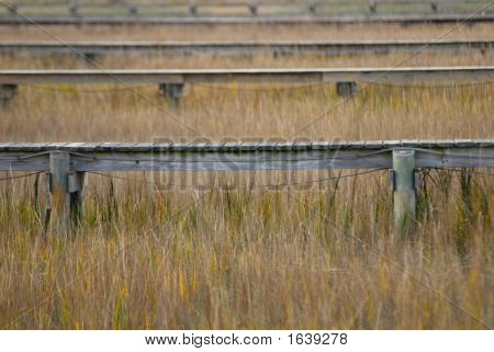 Docks In The Marsh In Color