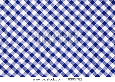 the blue checkered tablecloth