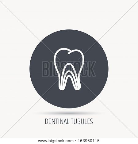 Dentinal tubules icon. Tooth medicine sign. Round web button with flat icon. Vector