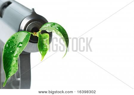 Gun with green leaf in barrel