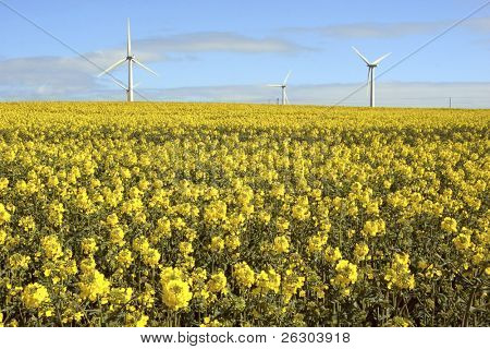 Wind Turbines at Out Newton, East Yorkshire, England