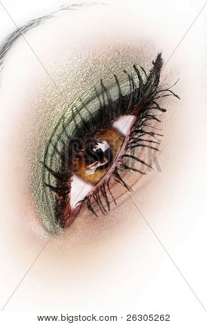 beautiful eye with makeup