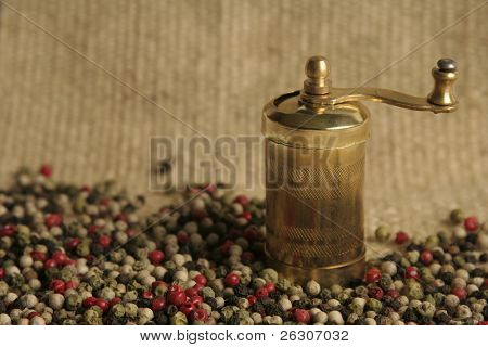 Multicolored peppercorns with pepper mill