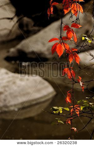 Red leaves against stones and small waterfall. Watercolor styled