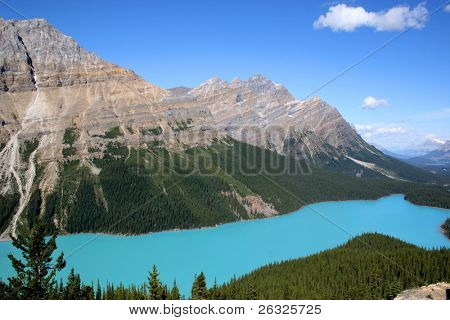 The beautiful turquoise blue of Peyto Lake in Banff National Park.