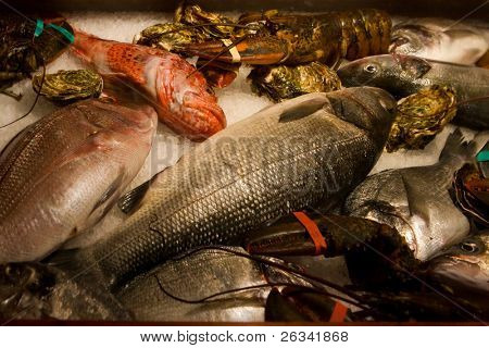 raw fish and cancers refrigerate on ice