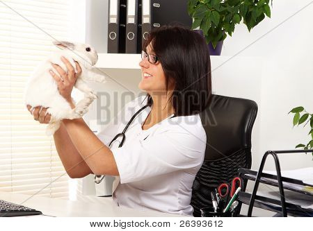 Woman veterinarian is checking health of white rabbit in her office