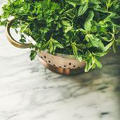 Bunch Of Fresh Garden Herbs In Brass Colander, Square Crop poster