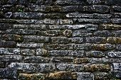 Постер, плакат: Древняя каменная стена Майя здания в Palenke Мексика