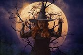 Scary Halloween Witch Standing Over Dead Tree, Full Moon And Spooky Cloudy Sky poster
