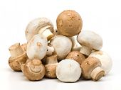 stock photo of shroom  - Pile of unwashed button mushrooms - JPG