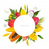 Tropical fruits background. Green palm leaves and tropical fruits isolated on a white background wit poster