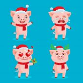 Santa Pig Emoji Set Collection. Vector Set Of Christmas Pigs With Santa Hats. Symbol Of The Chinese  poster