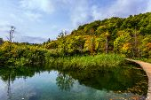 Plitvice lakes on a cloudy warm day. Red orange leaves of autumn trees on the shore of the lake.  Cr poster