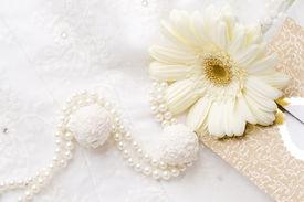 stock photo of single flower  - textile wedding background - JPG