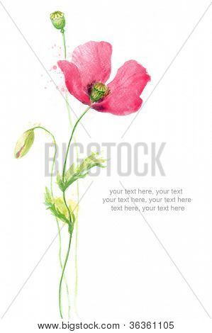 Painted watercolor card with poppy and text