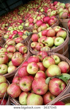 Apples At The Market