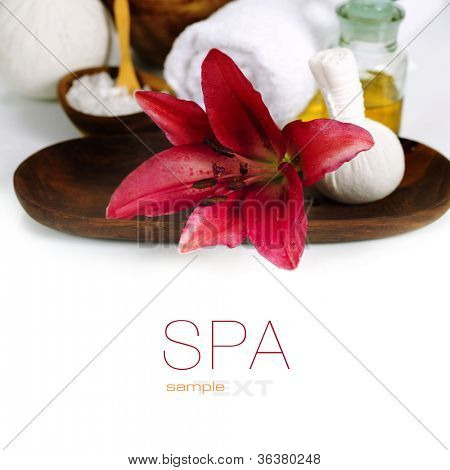 Spa concept (flowers, towel and sea salt). White background (with easy removable sample text)