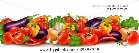 Banner made of fresh colorful vegetables. Vector illustration.