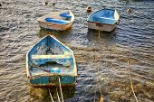 Weathered old fiberglass rowboats tied up in shallow water on the shorelines of Bermuda.