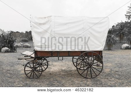 Black & White Covered Wagon