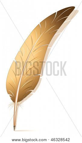 feather. Rasterized illustration. Vector version in my portfolio