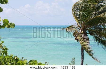 Bahia Honda State Park Atlantic View