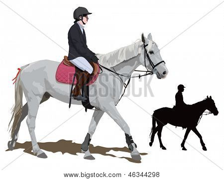 White race horse and lady jockey in uniform. Detailed color vector illustration.