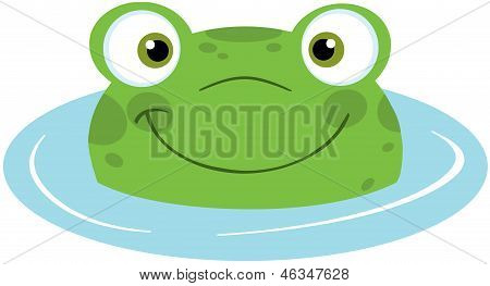 Cute Frog Smiling In Water