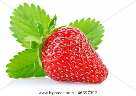 Ripe Juicy Strawberry With Green Leaves