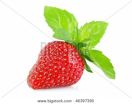 Ripe Juicy Strawberry With Green Leaves Of Mint