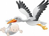stock photo of stork  - Illustration of a flying stork delivering a newborn baby - JPG