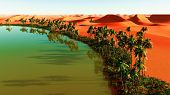 image of sahara desert  - Beautiful natural background  - JPG