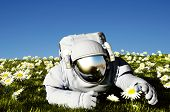 stock photo of moon-flower  - Astronaut on the field with  flowers - JPG