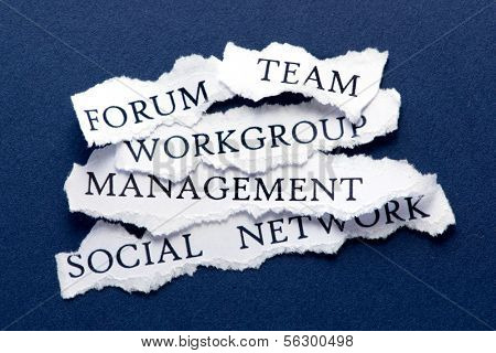 Roughly cut slips of paper with business interaction concepts such us forum, team, workgroup, management, and social network