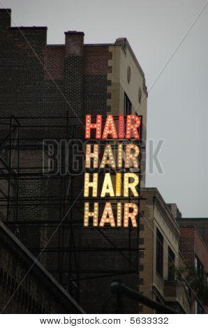 Hair, the Musical