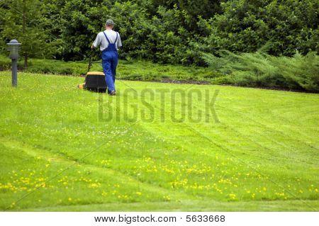 Gardener Mowing