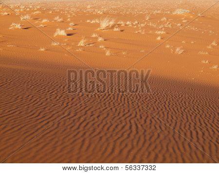 Red Sand In Namid Desert