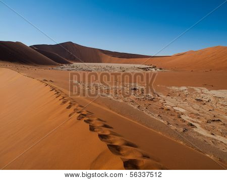 Footprints In The Sand Of Namib Desert Red Dunes
